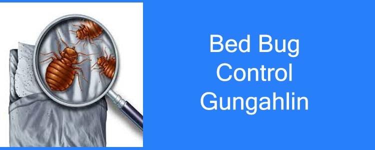 Bed Bug Control Gungahlin